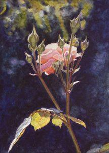 La soledad de una rosa II (1998), watercolour21,5 x 15,5 cm - Sold
