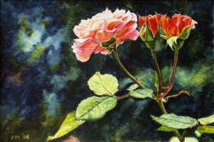 My roses VII (1998), watercolour 17 x 23,5 cm - Sold