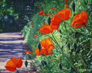 Nel Giardino della Toscana IV/Poppies for Christa (2011 by commission) - oil on linen - 40 x 50 cm - Sold