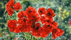 Poppies in a vase (1997), watercolour 14,5 x 24,5 cm - in a private collection