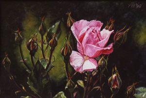 Rosa Toscana (1998) , watercolour 16,5 x 25 cm - Sold