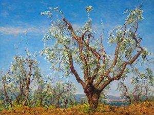Terra Senese (2006), oil on linen, 75 x 100 cm (2006) - Sold